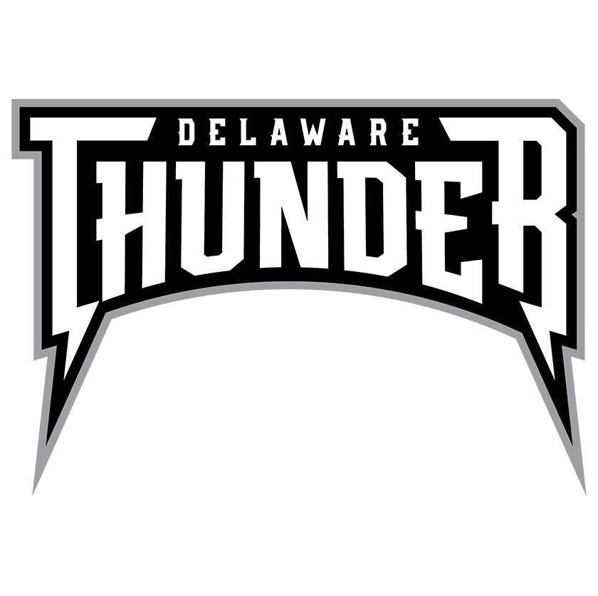 Delaware Thunder Text Logo