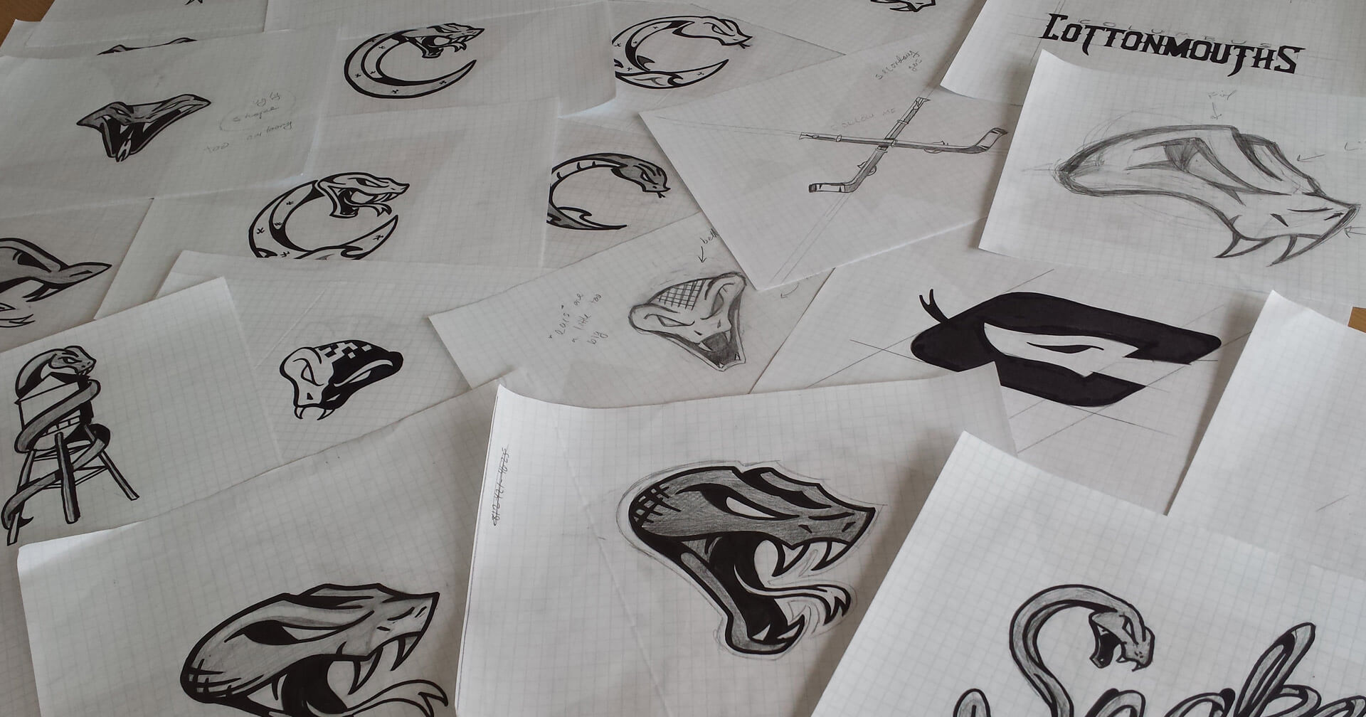 columbus cottonmouths branding system sketches